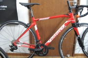 WILIER MONTEGRAPPA TEAM 2019