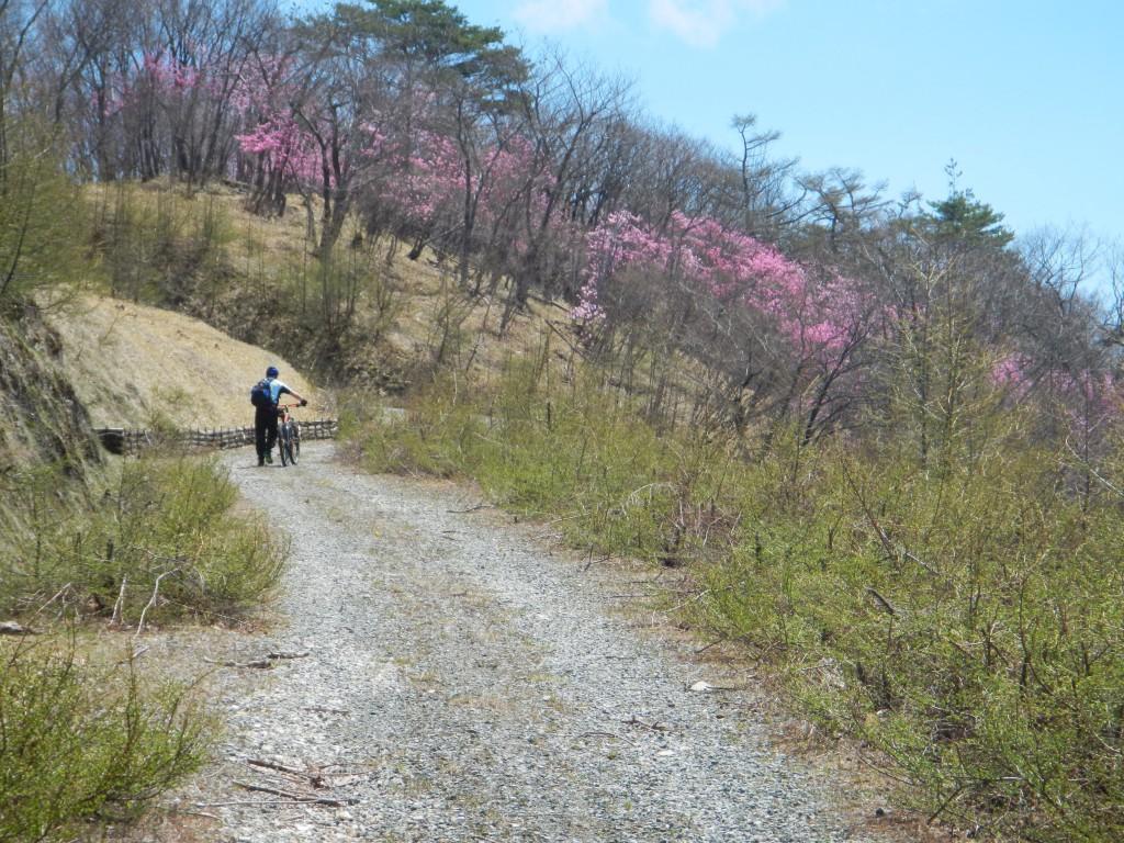 mtbツーリング日光2016.4 006